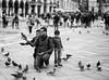 Pigeons #2 (ROSS HONG KONG) Tags: bird tourists pigeon pigeons birds square stmarkssquare venice italy black white bw street streetphoto noir monochrome blanc leica m8 noctilux 095 50mm