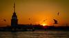 Anochecer Estambul (fernando.fadu) Tags: sunset gaviotas isla