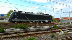 E484-103 (andrewcabassa) Tags: e484 traxx mrce dispolok bombardier ferrovia treno locomotore train fotocamera genovavoltri huaweipralx1 huaweip8lite huawei railway railstation sosta oceanogate livrea nera interportoservizicargo italia italy liguria
