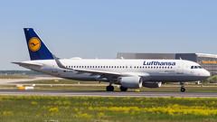 Airbus A320-214(WL) D-AIUF Lufthansa (William Musculus) Tags: am main airport frankfurtmain flughafen eddf fra spotting fraport frankfurt daiuf lufthansa airbus a320214wl a320200 william musculus