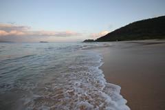IMG_1106A (Aaron Lynton) Tags: wave waves shorebreak cano canon 7d maui hawaii summer fu fun schools out spl