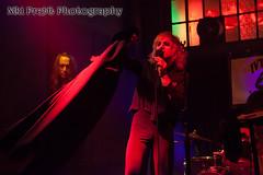 IMG_5419 (Niki Pretti Band Photography) Tags: band concertphotography liveband livemusic livemusicphotography music nikiprettiphotography scottyoder ivyroom canon canon5d canonphotos canonphotography