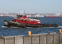 Ellen McAllister in Bayonne, New Jersey, USA. April, 2018 (Tom Turner - NYC) Tags: mcallister ellenmcallister tug tugboat vessel bay water waterway tomturner bayonne newjersey gardenstate newyork ny nyc unitedstates usa marine maritime pony port harbor harbour transport transportation pier