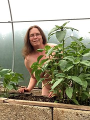 Don't say I didn't warn you! (Julie (thanks for 9 million views)) Tags: 2018onephotoeachday naked worldnakedgardeningday iphonese selfiesunday garden polytunnel plants sunflowers hww human person