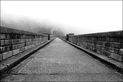 Ben Crom Reservoir. (ikerr) Tags: bencrom reservoir dam water mourne mountains mountain northernireland ireland countydown panasonic lumix fz1000 black white mist fog cloud