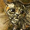 Michou (franck.sastre) Tags: cat gato chat art miau painting picture black