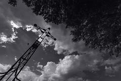 L'oiseau (Jacques Isner) Tags: vallonpontdarc ardèche pentax pentaxart pentaxflickraward pentaxk1 croix arbre ciel cloud contrejour jacquesisner samyang14mm samyang