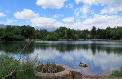 A Little Stroll Around Sinton Pond (Patricia Henschen) Tags: colorado coloradosprings park sintonpond water pond reflection reflections clouds trees urban mountain pikespeak