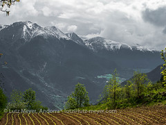Andorra mountain landscape: Sant Julia parroquia, Gran Valira, Andorra, Pyrenees (lutzmeyer) Tags: andorra bississarri bixessarri cg6 cs600 camidecanolich carreteradecanolichcs111 europe gebirge granvalira iberia iberianpeninsula lutzmeyer pirineos pirineus pyrenees pyrenäen santjuliadeloriaparroquia agricultura agriculture berge bild camisrutes foto fotografie frühjahr frühling gebirgszug hauptstrasse iberischehalbinsel image imagen imatge landscape landschaft landwirtschaft lutzlutzmeyercom mai maig mainroad may mayo mfmediumformat montana montanas mountains muntanyes paisaje paisatge photo photography picture primavera rural rutaciclista17colldegallinacanolich sonnenaufgang sortidadelsol spring sunrise tabak tobacco tobaccoplant valley santjuliadeloria