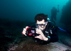 Aquaman #marineexplorer (Marine Explorer) Tags: scuba nature marine underwater australia marineexplorer rx100 compact sony
