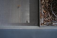 2018-04-FL-183520 (acme london) Tags: barcelona corridor fira floor flooring hotel jeannouvel renaissancehotelfira spain steelgrating