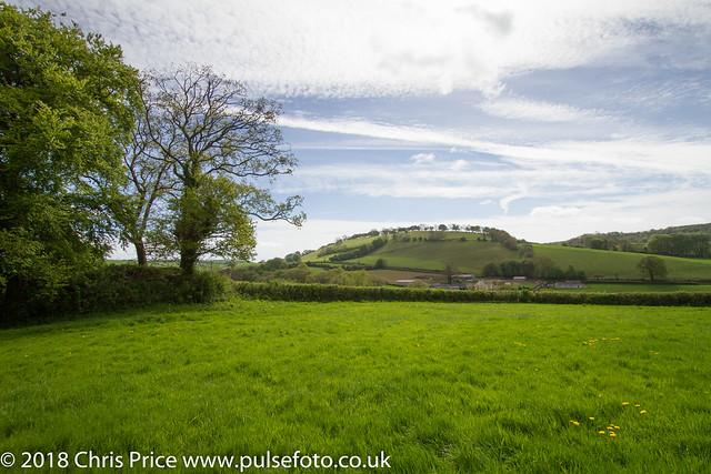 The site of the former Norman Castle, Bampton, Devon