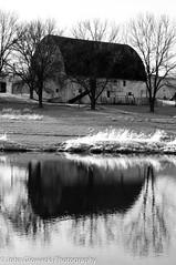 365-121.jpg (rustyuglythings) Tags: pond bw barn monochrome wisconsin farm reflection 365 windsor