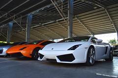 Lamborghini Gallardo LP560-4, LP570-4 (Edrian1011) Tags: carspotting automotivephotography cars sportscar carspotter lamborghini gallardo superleggera lp5704 lp5604