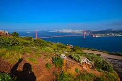 Golden Gate Bridge Overlook - Hawk Hill - Marin County - California (TravelMichi) Tags: californa california travel usa2018 sausalito usa us