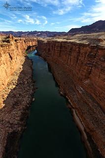 _03A6184 Colorado River ©Dancing Snake Nature Photography