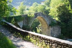 Ponte della Brusia, Bocconi (FC), Italy (pistacchiop) Tags: green romagna bridge pedestrian ponte italia italy