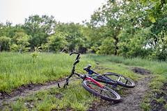 my bike lying on a country road (uiriidolgalev) Tags: bike lying country road
