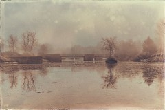 Lake View (Bill Eiffert) Tags: pictorial antique early wet plate park water lake nature trees