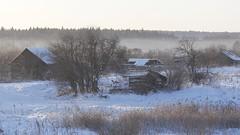 06.01.  2018       15-12-33 (angren21) Tags: trees snow landscape village abandone