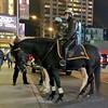 IMG_1809 (danimaniacs) Tags: newyork man guy police cop horse mounted helmet hat cap