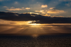 Dawn of Another Sea Day (Jill Clardy) Tags: 201804254b4a9364 ncl cruise ship the pearl norwegian lines pacific ocean sunrise clouds sea rays cloudy dawn 365the2018edition 3652018 day115365 25apr18