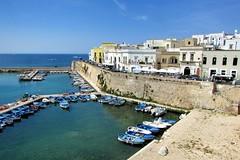 Gallipoli #2- Puglia (Markom 4.0) Tags: puglia italia italy mare sea porto gallipoli boats barche canonsx400