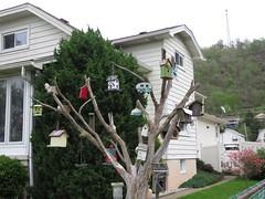 Warwood Spring (jcsullivan24) Tags: wheeling wv warwood spring birdhouses