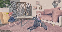 Puppy Playtime (Emery/Teagan Parker) Tags: lazo basil colormecute livingroom gachagarden mainstorerelease bebebody fittedbodies sl secondlife cute playtime puppy dog adorable fun