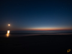 Måne over Tranum strand (morten-t) Tags: danmark denmark dänemark jammerbugten longexposure lumixgvario14714asph lumixg9 mond nordisklys nordjylland nordjütland nordsee nordsjøen northjutland northsea panasonic panasoniclumixgvario714mmf4asph tranum tranumstrand vesterhavet beach døgn hav langexponering meer moon måne nacht natt night ocean sand sjø sommer strand summer vann årstider