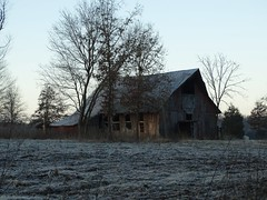 Old barn on frosty morning (Gerald Barnett) Tags: barns barn oldwood oldbarn oldbuilding oldbarns frost icecrystals landscape outdoors morninglight morning availablelight art atmosphere abandoned ab derelict decayed contemplative countryside extraordinary trees tranquility tranquil serenity serene illinois usa shadowsandlight shadows lightandshadow