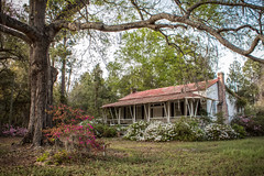 Cross, South Carolina (itsbrandoyo) Tags: berkeleycounty cross southcarolina spring lakemoultrie historic abandoned old house architecture vernacular azaleas inbloom southern
