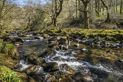River Dysynni (Neilpl) Tags: wales uk snowdonia mountains river dysynni springtime landscape travel holiday nature grass naturalbeauty sony a7rii zeiss loxia 21mm beautiful sunshine