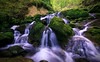 Soubey 2018 - Switzerland (Rogg4n) Tags: soubey jura switzerland cascade waterfall longexposure forest nature water stream river doubs moss green humid flow woods tree suisse enchanted wonder hoya fairytale torrent landscape canoneos5dmarkiii ef1635mmf4lisusm
