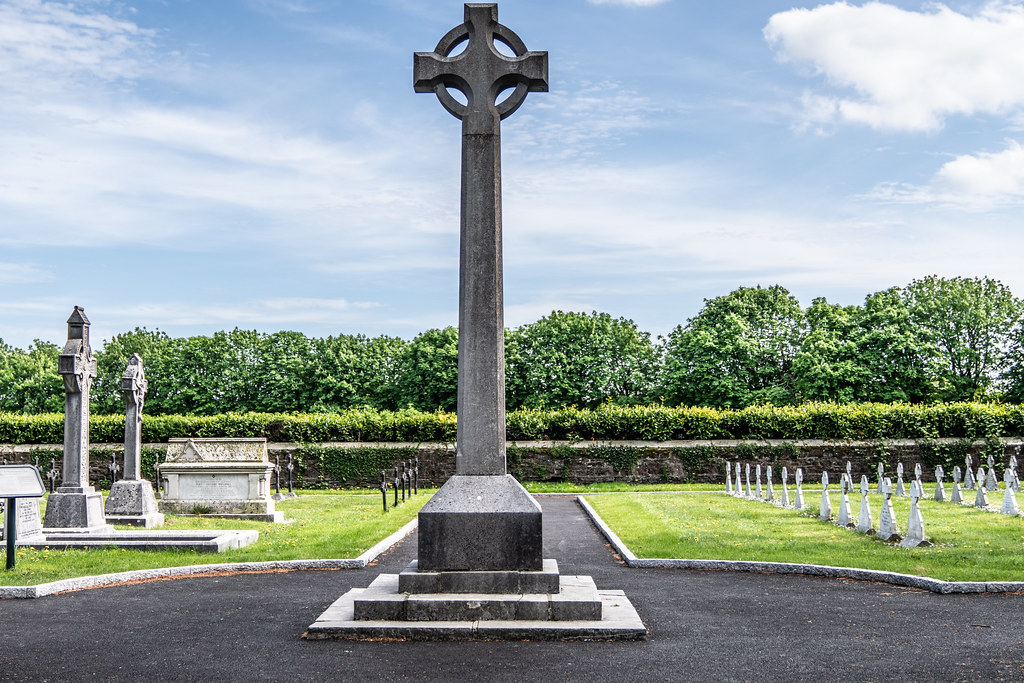 ST. PATRICK'S COLLEGE CEMETERY IN MAYNOOTH [SONY A7RIII IN CROP SENSOR MODE]-139538