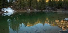 Morning at Emerald Pond (kevin-palmer) Tags: littlehorncanyon bighornmountains bighornnationalforest wyoming spring april nikond750 tamron2470mmf28 lake tarn pond reflection calm water snow early morning sunrise gold golden sunlight green emerald pinetrees backpacking stitch panorama panoramic mirror