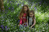 alyssia and caitlin bluebells cuddles (grahamdale74) Tags: bluebells 2018 alyssia caitlin chel