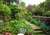 Small & Beautiful.. (Adam Swaine) Tags: gardens garden naturelovers nature spring london canon flora flowers beautiful eastdulwich cities england english uk homes seasons greaterlondon