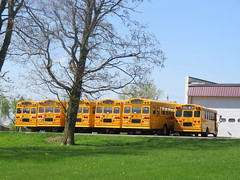 Freeman Bus Corp. FS-65s (ThoseGuys119) Tags: freemanbuscorp schoolbus watertownny thomasbuilt freightliner fs65 c2 saftliner yellowbumpers