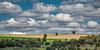 Castilla fields (Ignacio Ferre) Tags: segovia españa spain comunidaddecastillayleón campo field nube cloud cielo sky paisaje landscape panorama nikon castilla