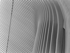 under the Oculus (NYC One World Trade Center) (NYC Macroscopist) Tags: oculus worldtradecenter wtc nyc newyork newyorkcity spring symmetry film leica expired bw blackandwhite bnw modern modernarchitecture pattern 50mm kodak