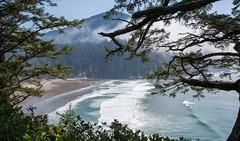 Beach Through Trees (tschwan22) Tags: park state west oswald g85 panasonic hidden beach landscape ocean pacific coast oregon