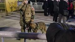 Cave canem (Raúl Alejandro Rodríguez) Tags: soldado soldier perro dog bozal muzzle arma arm plaza de mayo buenos aires argentina
