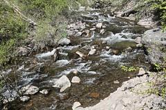Fall Creek down from Treasure Falls (Bill Jacomet) Tags: road to durango co colorado travel trip drive 2018 fall creek down from treasure falls