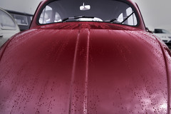 Trails (Andreas Reinhold) Tags: red reflection water car rain metal vw bug volkswagen drops automobile beetle shapes hood raining lid clasic aircooled dfl