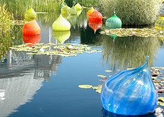 """Detail of """"Boats"""" (Grufnik) Tags: red sculpture orange plant reflection green art water glass grass landscape shiny onion bulbous organic lilypad dalechihuly"""
