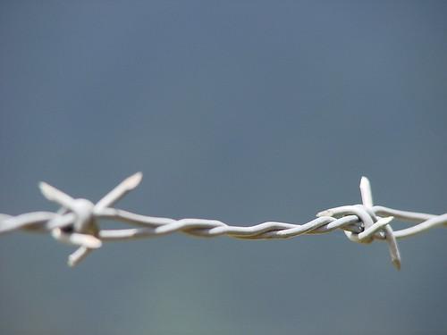 por la paz y la libertad