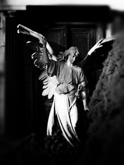 Mourning Angel (Fotografie mit Seele (old Site)) Tags: sculpture cemetery statue angel wings cemetary gothic