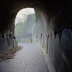 Broad is the road that leads... (Hart from Golborne) Tags: cemetery grave rollei rolleiflex arch stones tombstone tunnel rolleiflex28f liverpoolanglicancathedral