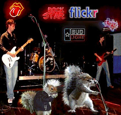 Flickr Garage Band (Terry_Lea) Tags: rock fun drums interestingness squirrel squirrels guitar band animation mohawk animated gif phun rockers flickrrockstar tbas rockmeamadeus terrorlea abigfave